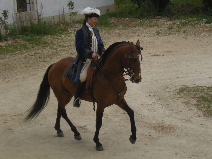 Charlotte Wittbom riding Vip, a Lusitano stallion