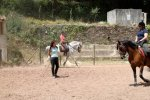 A classical riding lesson at Quinta do Brejo.