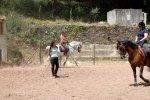 A classical riding lesson at Quinta do Brejo.