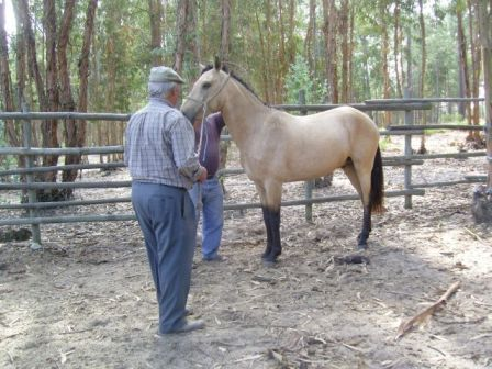 Dante with his breeder, September 2011 -  www.charlottewittbom.com