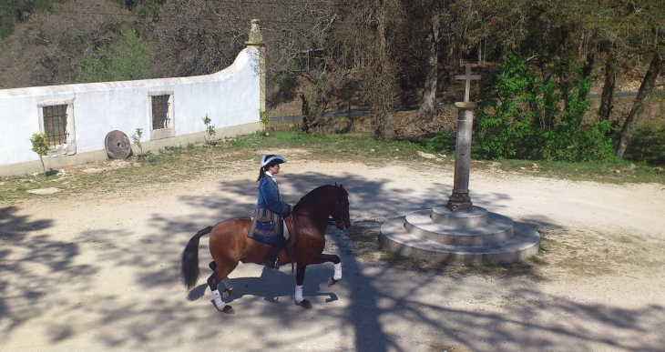 Charlotte Wittbom riding Vip at Quinta do Brejo.