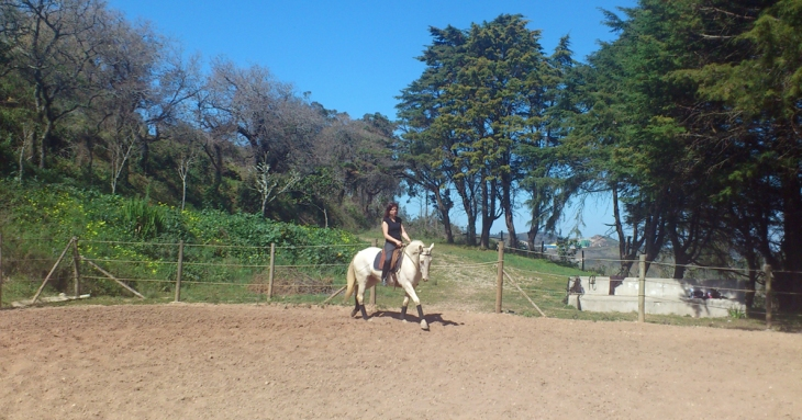Charlotte Wittbom schooling Spanish Mustang mare 'Moon Fox' at Quinta do Brejo