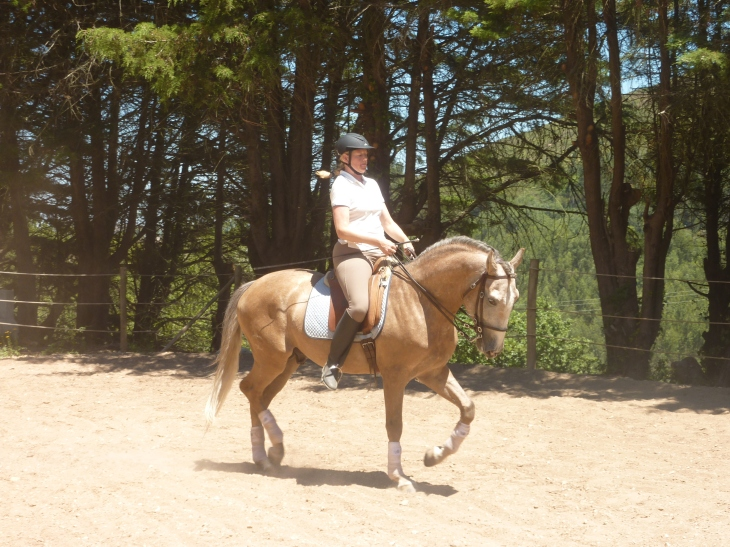 Cheque, PSL Lusitano and his owner, Summer 2012