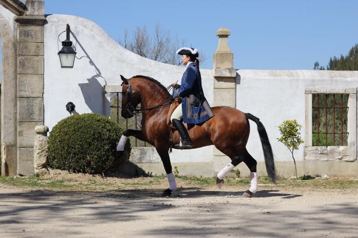 Charlotte Wittbom riding Lusitano, 'Vip' at Quinta do Brejo - www.charlottewittbom.com
